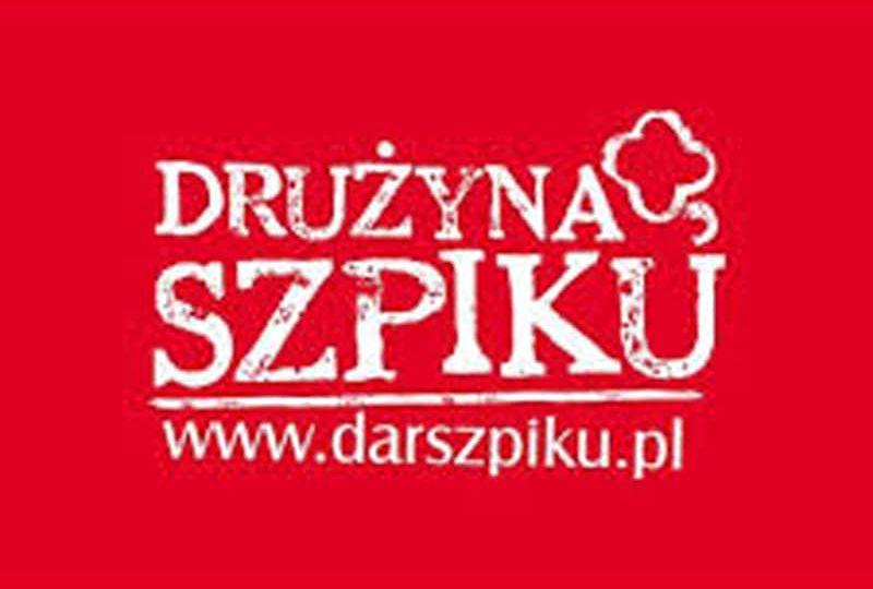 logo_drużyna-szpiku